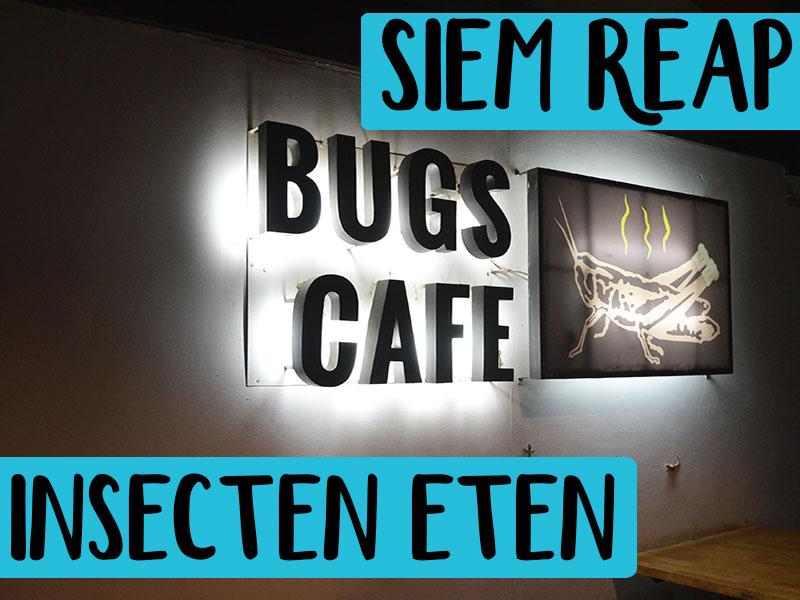 insecten eten bugs cafe siem reap