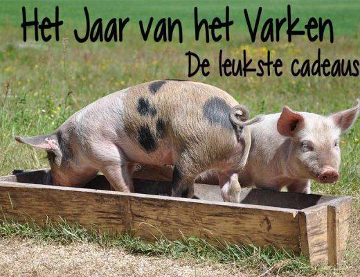 jaar van het varken cadeaus