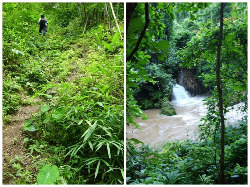 jungletocht Chiang Mai