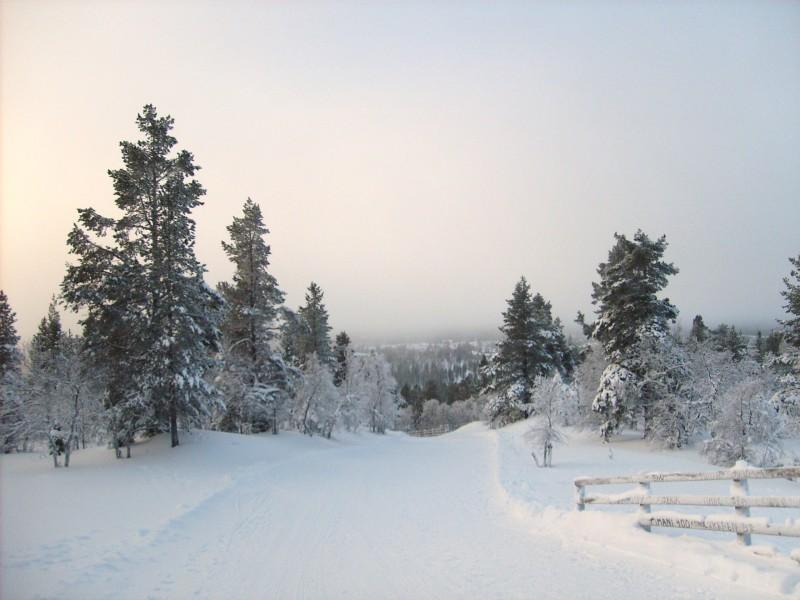 Reizen naar Lapland