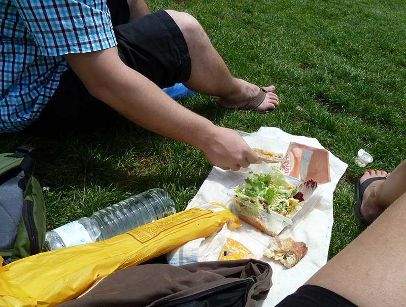 romantisch picknicken onder de eiffeltoren