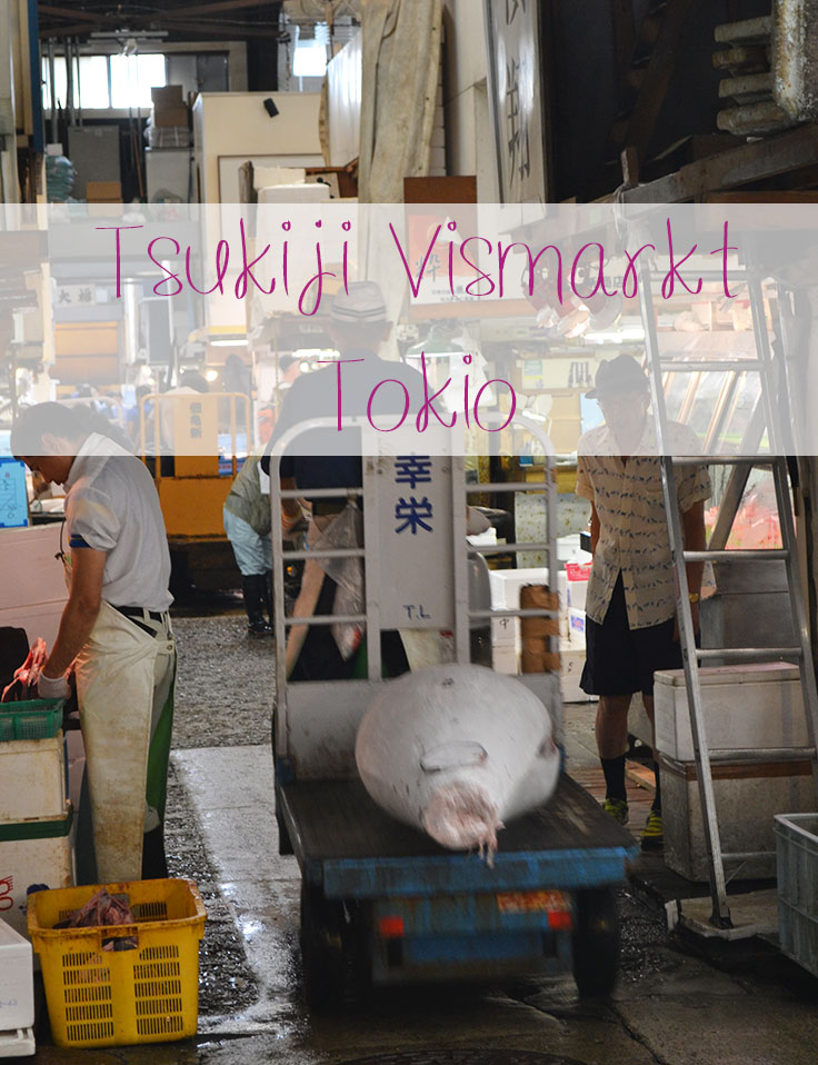 tsujiki vismarkt