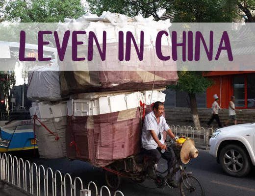 feature leven in china