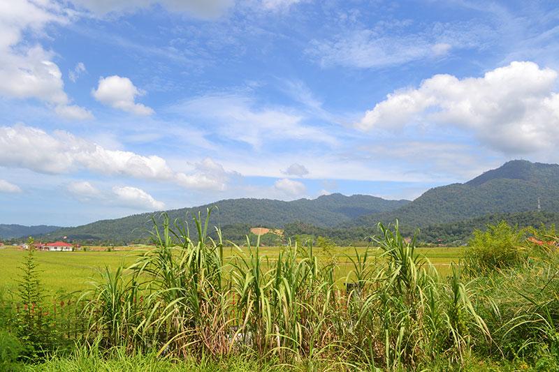 vakantie naar langkawi