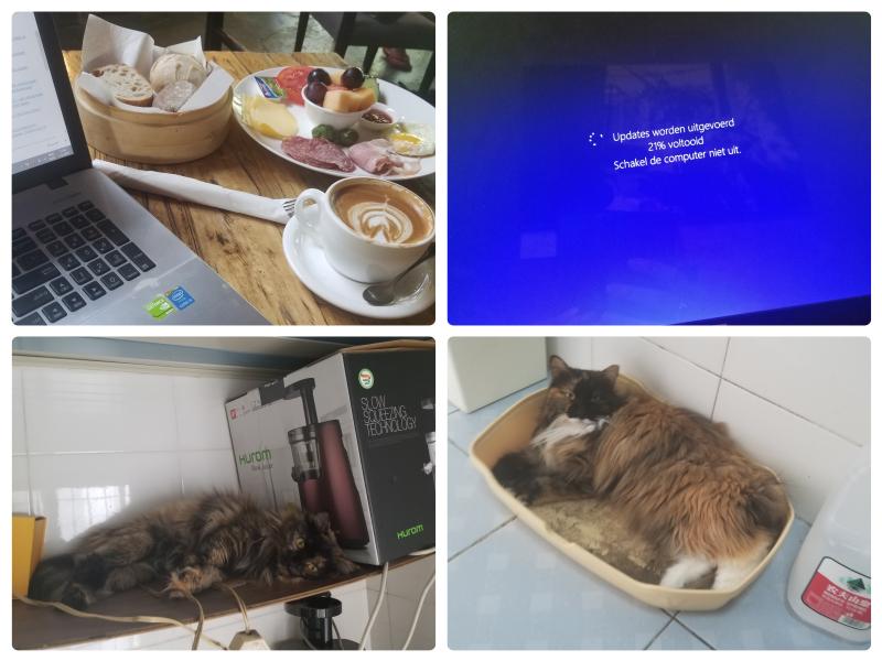 Cafe Zarah Beijing