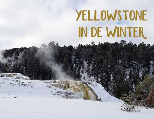 Yellowstone in de winter bezoeken